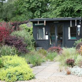 open gardens, garden centre and tea room in Colchester and Essex